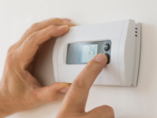 How Temperature and Humidity Impacts Your Collection