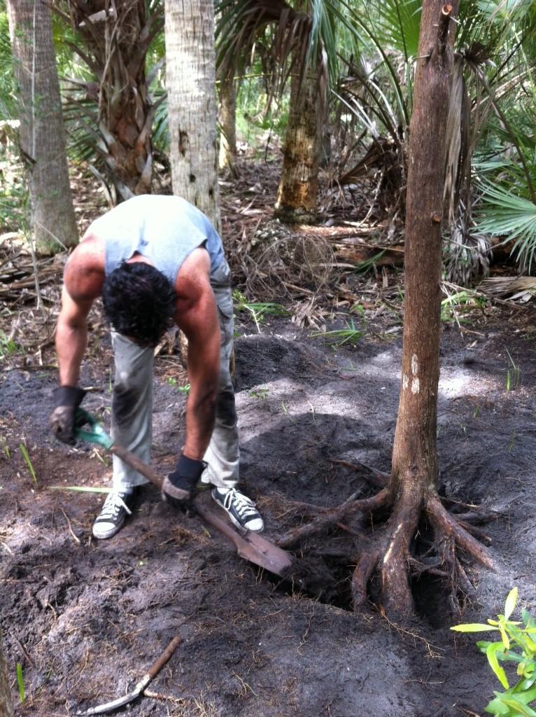2+Excavating+a.JPG