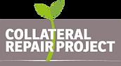 CRP_Logo_Final3-300x164.png
