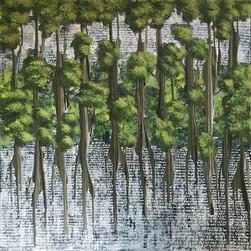 Stories No Mangrove
