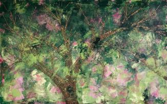 Corona Stories Orchard