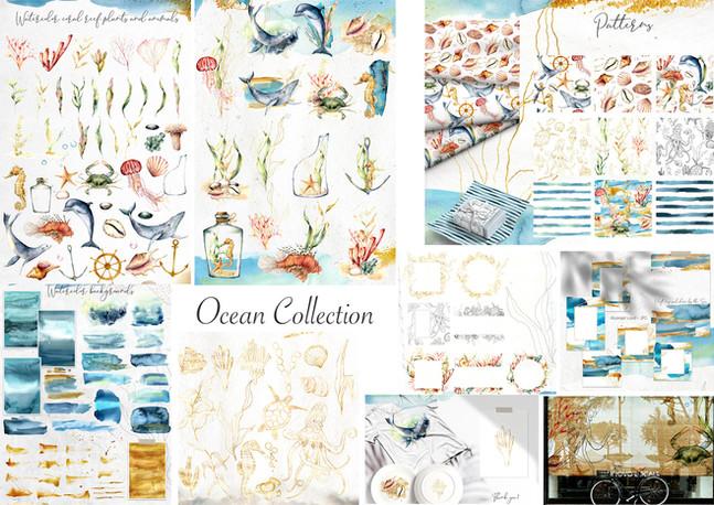 ocean collection