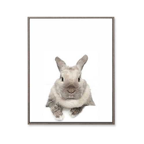 Wall art - Bunny