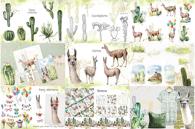 cacti llama collection