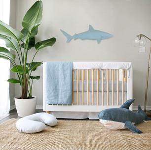 Ocean thyme nursery