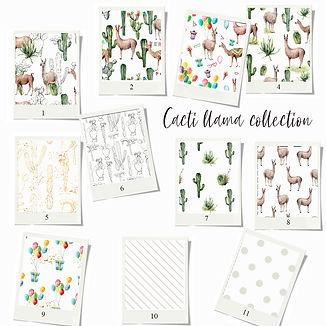 swatch card patterns-cacti-llama.jpg