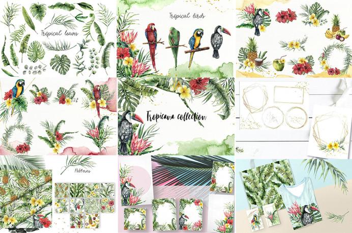 tropicana collection