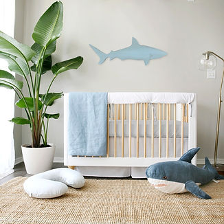 nursery%20shark-1000_edited.jpg