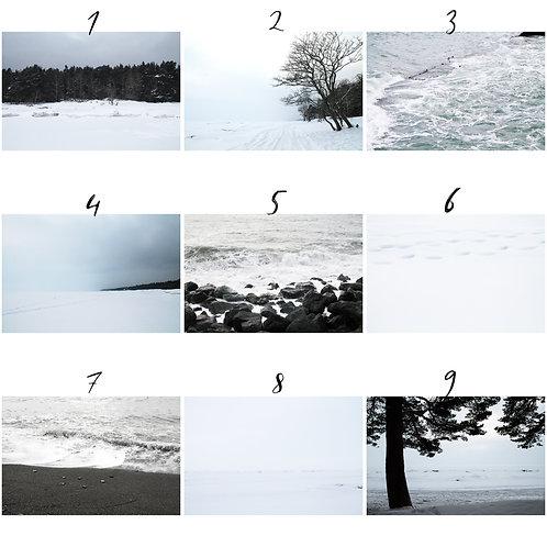 Canvas print - Nordic Winter