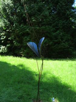 Blickling-hoveton-hall-2012-0061