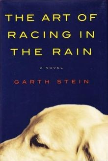 The Art of Racing in the Rain by Garth Stein.jpg