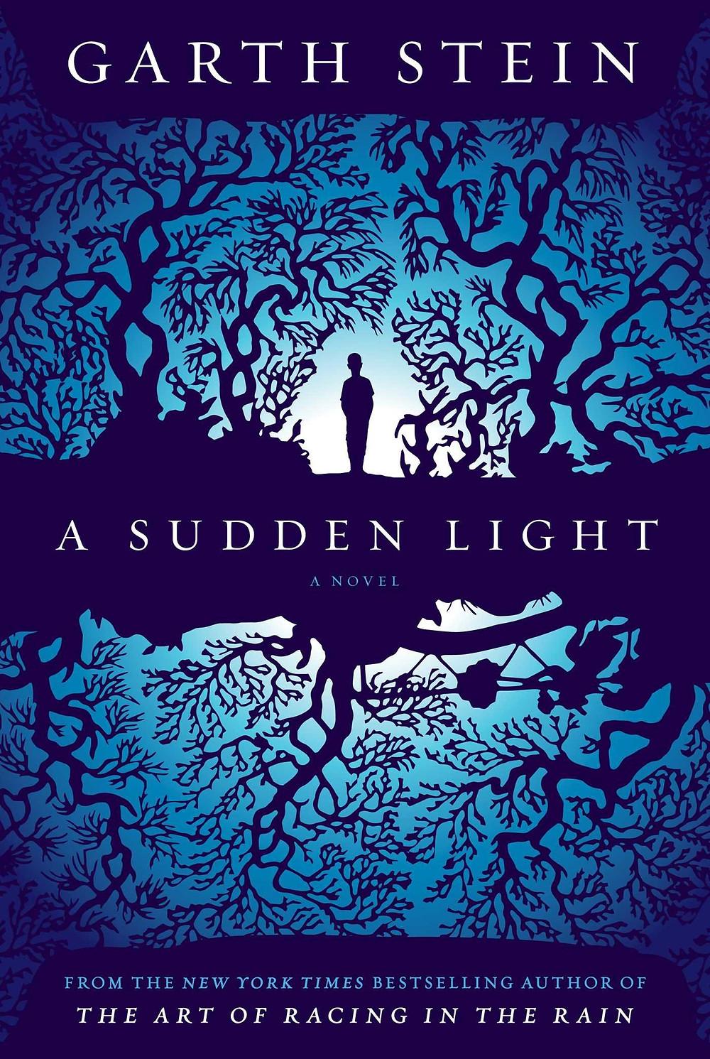 A Sudden Light by Garth Stein.jpg