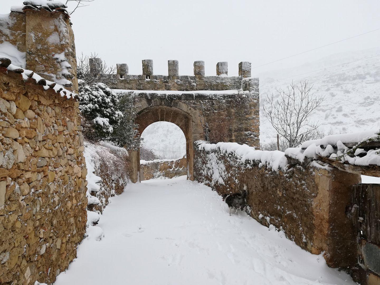 Nieve - Febrero 2017