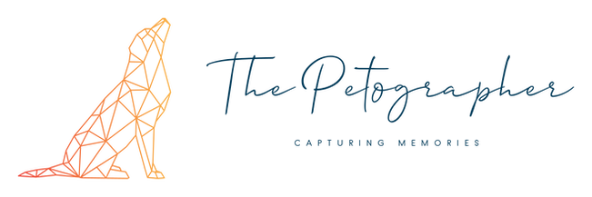 All New the petographer logo