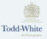 toddwhite_logo_on_blue.png