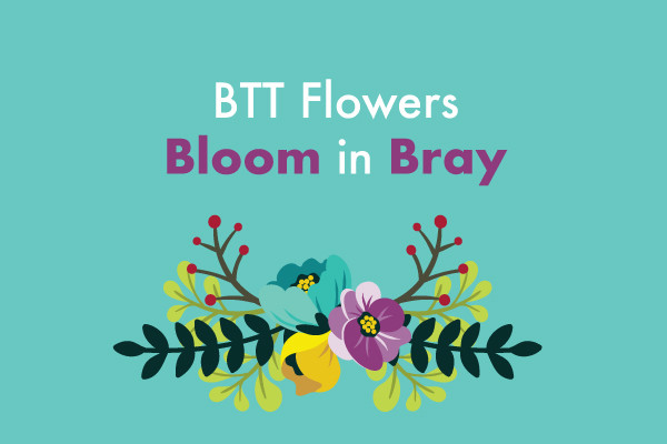 Bray Tidy Towns Flowers