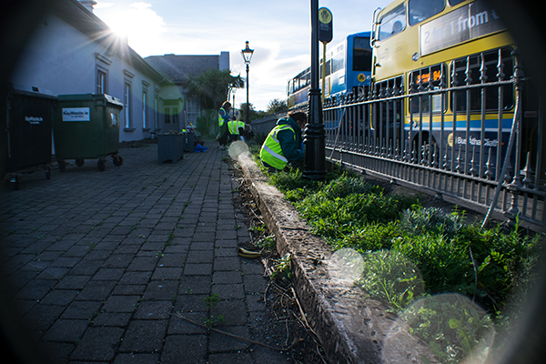 Bray Tidy Towns