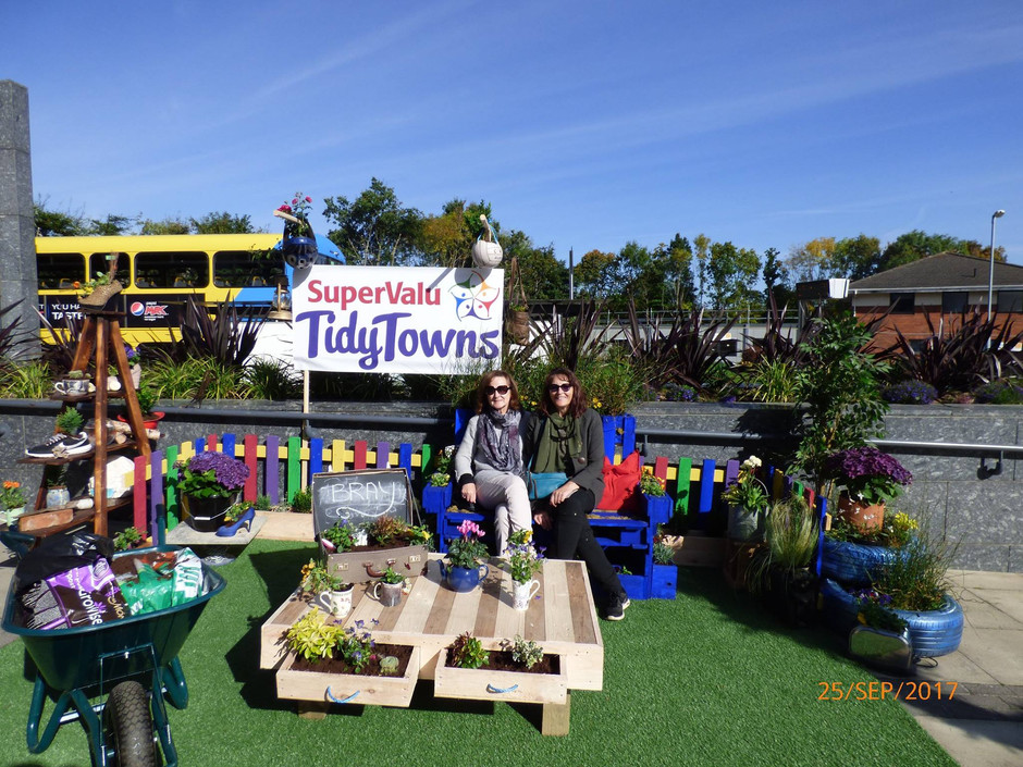 Bray Takes Bronze at National Tidy Towns Competition 2017