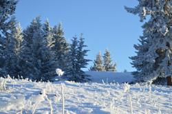 WinterSlideshow11