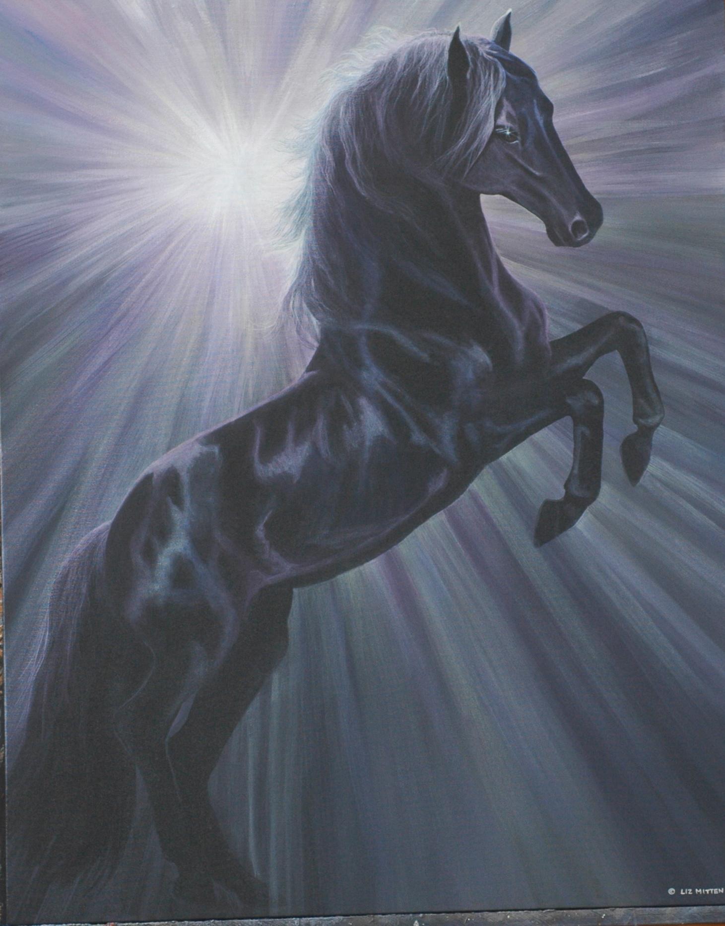 Sky Stallion