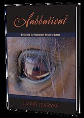 Sabbatical Book Cover