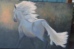 Horses Take Us...Towards The Light