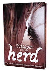 Wisdom from th Herd Book Cover