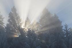 WinterSlideshow09