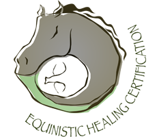 Equinistic Healing Certification Logo