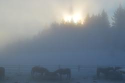 WinterSlideshow08
