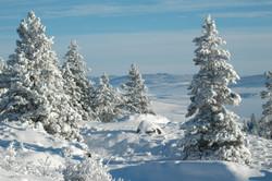 WinterSlideshow29