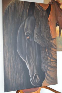 Dark Horse Close