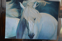 Horses Take Us... Beyond The Veil
