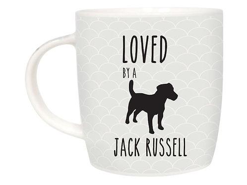Jack Russell Pet Meg