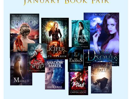 Rebecca Hamilton's January Book Fair