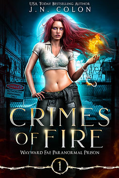 Crimes of Fire EBOOK 300 DPI.jpg