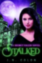 Secret Salem series