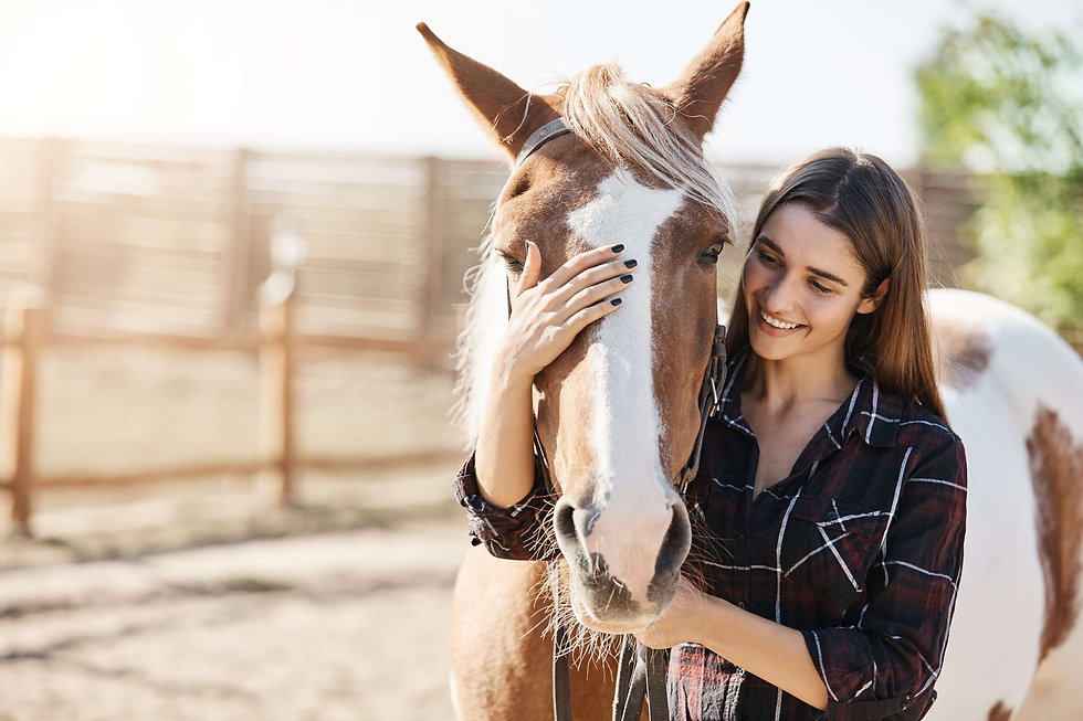 Hevonen tytön kanssa