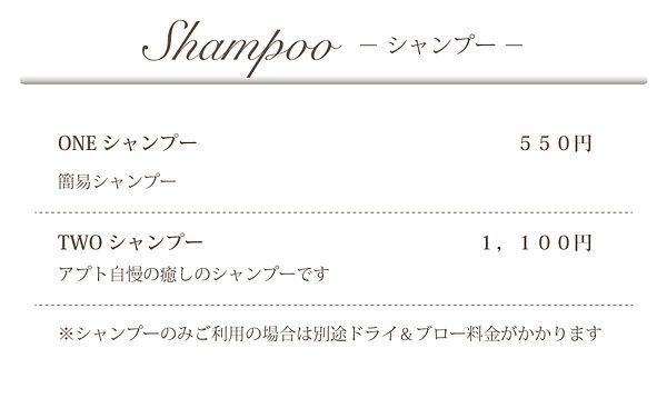 shampoo10.jpg