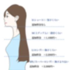 ロング料金イラスト2.jpg