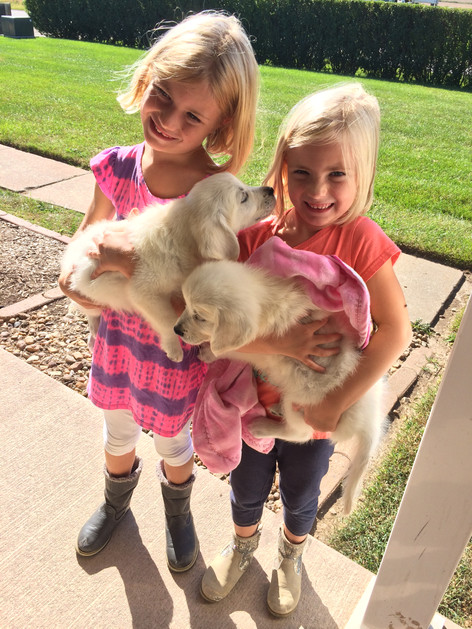 The girls are excited to meet their new puppies! (Chloe on left)