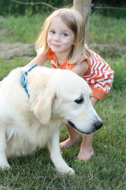 A great dog with kids!
