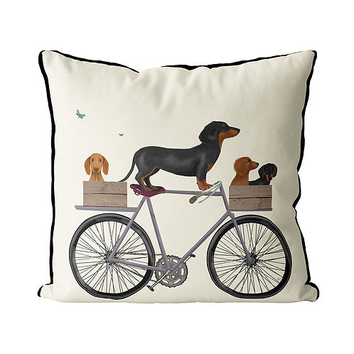 DACHSHUNDS ON A BICYCLE