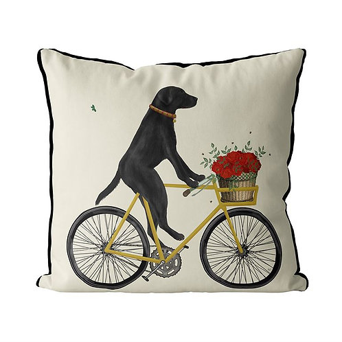 BLACK LAB ON A BICYCLE
