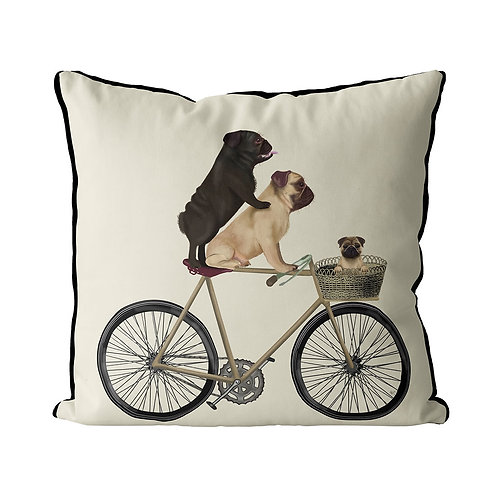 PUGS ON A BICYCLE