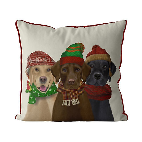 LABRADORS WITH HATS& SCARVES