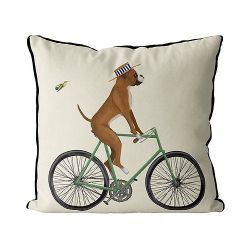 BOXER ON A BICYCLE