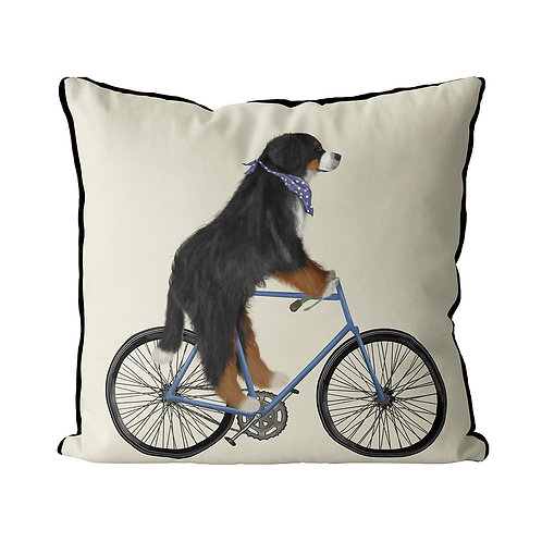 BERNESE ON A BICYCLE
