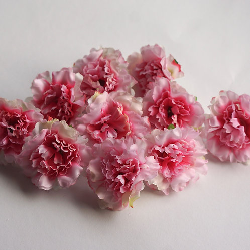 Pink Flowers 10x