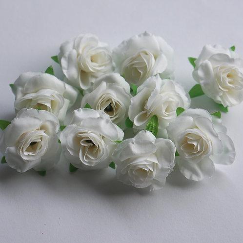 White Roses 10x